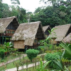 Yacuma Lodge, Rio Napo (Tena)