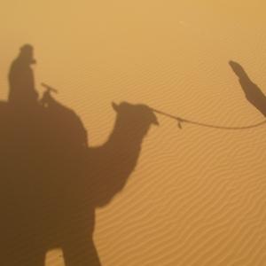 Kamelentocht in Merzouga