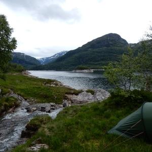 Wildkamperen in Noorwegen, zalig!