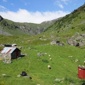 Hut in noorwegen