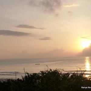 Elke ochten prachtige zonsopkomst