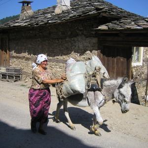 Bulgarije, Rodopi gebergte, straatbeeld in bergdorpje Dolen